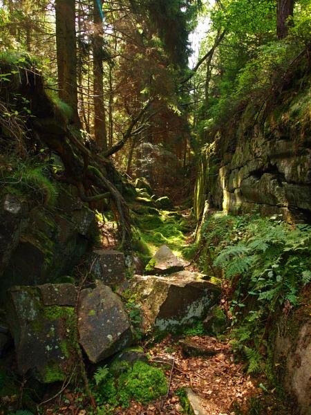 Rocks n\' Wood by AE1P
