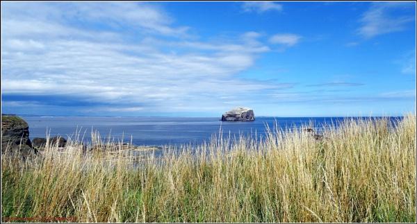 Bass Rock East Coast Scotland by icemanonline
