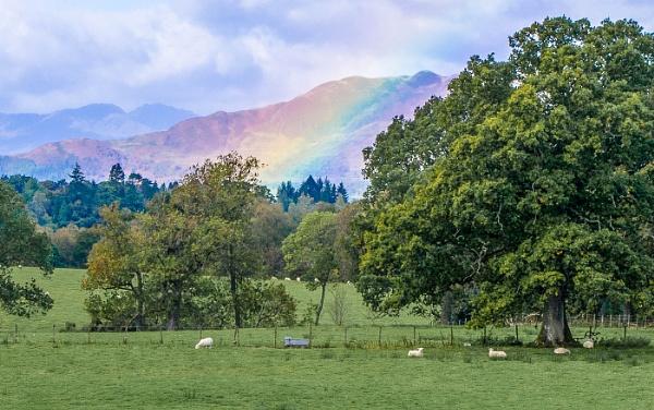 Near Drymen Stirlingshire by Belleyeteres