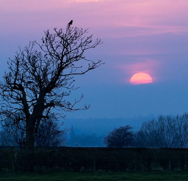 sunset by lfc1892