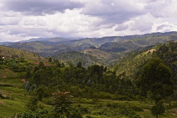 Rwanda by Myed