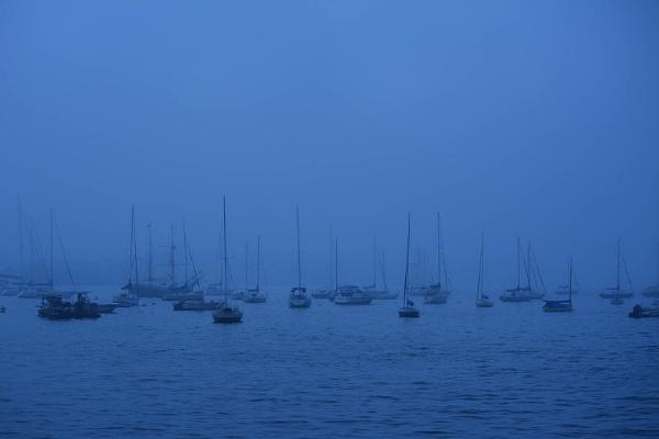Sitting In The Fog by rking3281