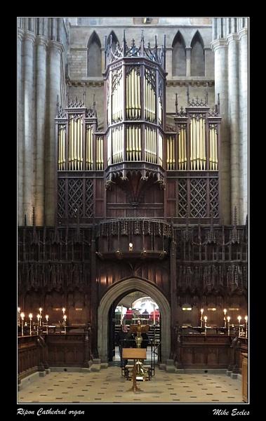 Ripon Cathedral organ by oldgreyheron
