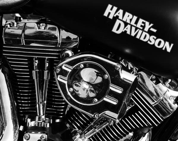 Harley Davidson by franken