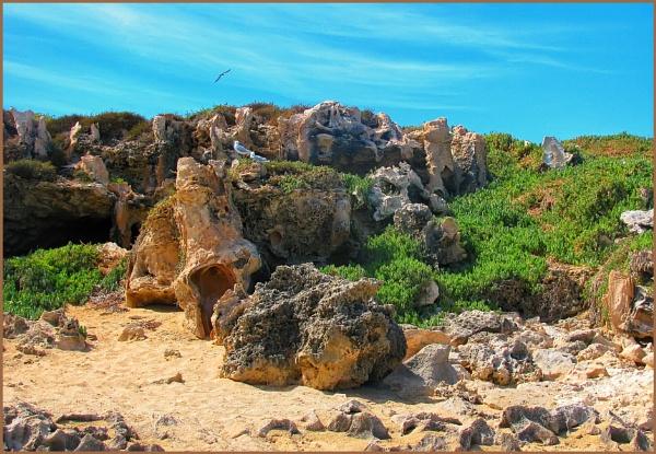 Penguin Island_2 and 3 by Jocelia