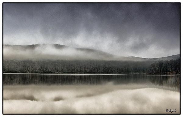 In a Fog by Barjo