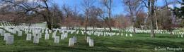 Views around Arlington