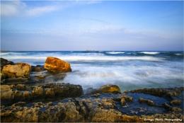 Psaltos seascape