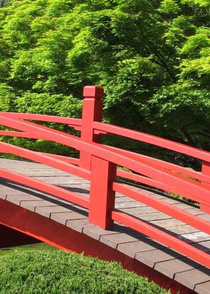 Japanese Gardens San Jose CA by cconstab