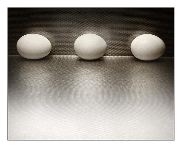 eggs by jimkon