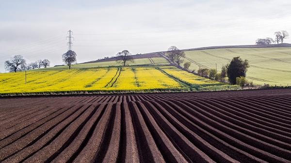 Ploughed field by billmyl