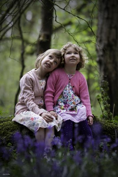 Bluebell Woods by neilrwalker