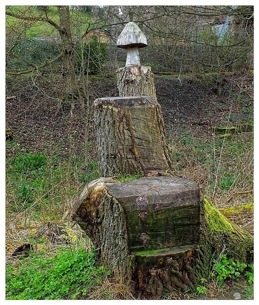 The Mushroom by lenocm