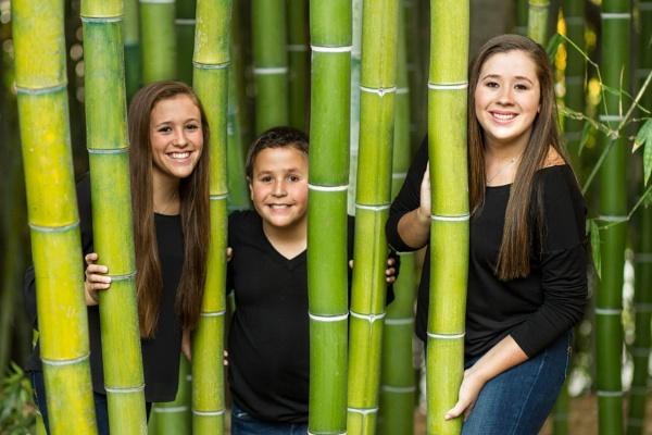 Peek-a-bamboo by Abetts
