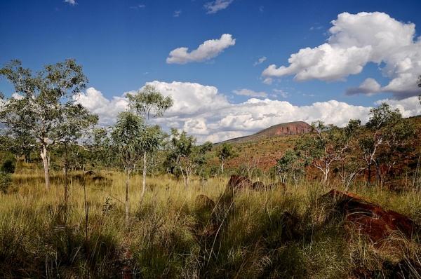 AUSTRALIA 2013 #44 by JN_CHATELAIN_PHOTOGRAPHY