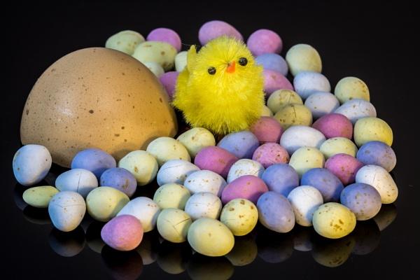 amongst the eggs by lesterlester