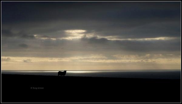 Sundown. by kaz1