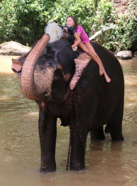Having an Elephant shower by Simon_Marlow