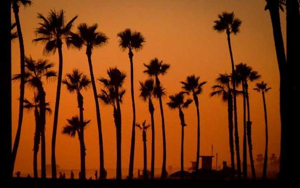 California Sunset by Dandrummer18