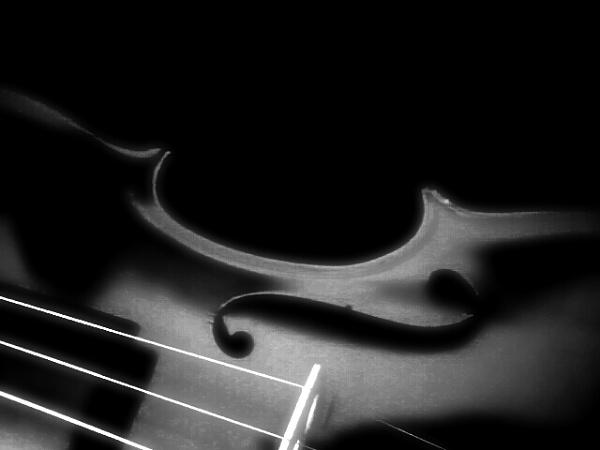 Violin by Sladjana71
