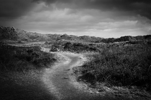 Coastal Path by NikonNovice