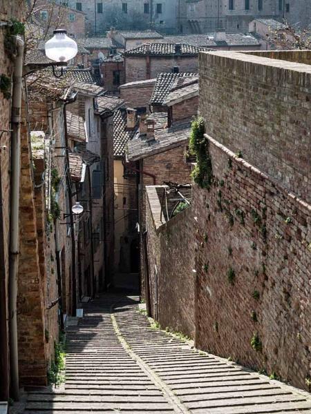 Urbino Street by camay