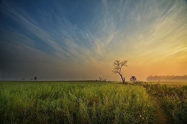 Morning Hues by arindomb