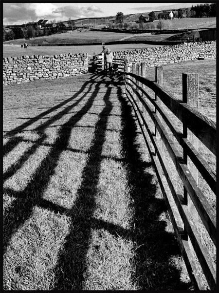 Weardale shadow by JawDborn