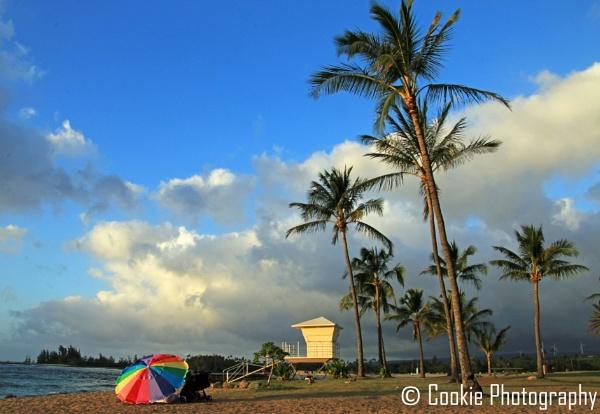 Aloha \'Ohana by Cookie_Monster