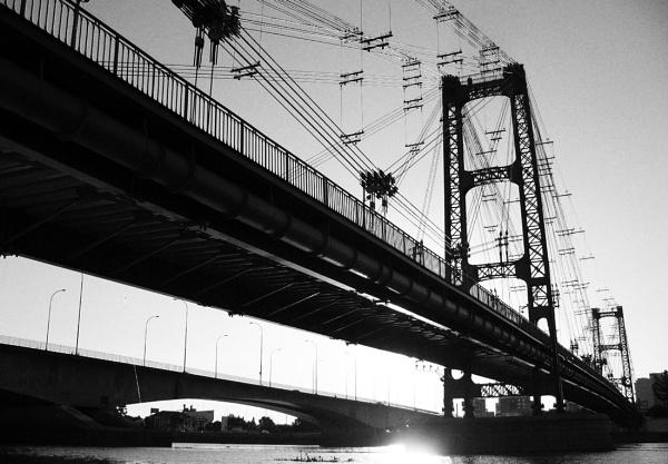 Bridge by Davidroid
