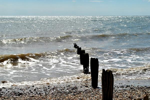 Tide is Rye! by elizabethapike62