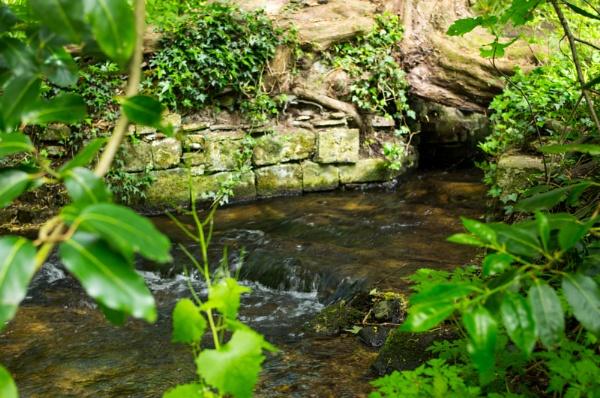 Babbling Brook by Teaka53