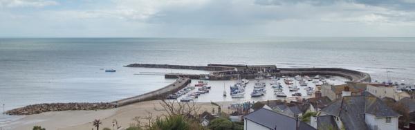 Lyme Regis Harbour (The Cobb) by pledwith