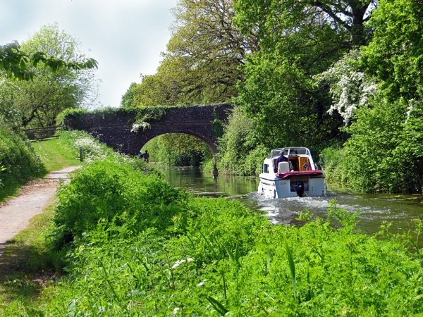 Tiverton Canal by KarenFB