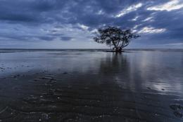 Blue Morning Nudgee beach