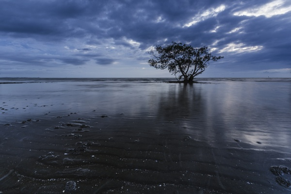 Blue Morning Nudgee beach by Merbert