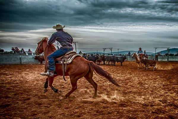 Israeli Cowboy by yos