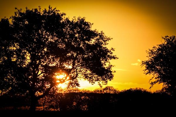 Sunset by nikonuseruk