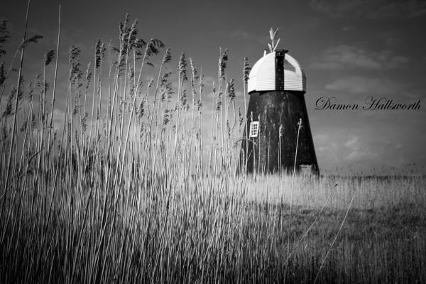 Runham Drainage Mill by DamonPaulHallsworth