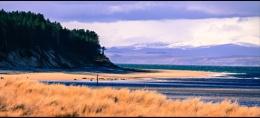 River Findhorn