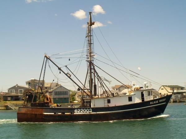 "~ \""Black Sheep\"" Trawler by LexEquine"