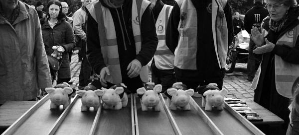 Silly Sunday - pig race by jadus