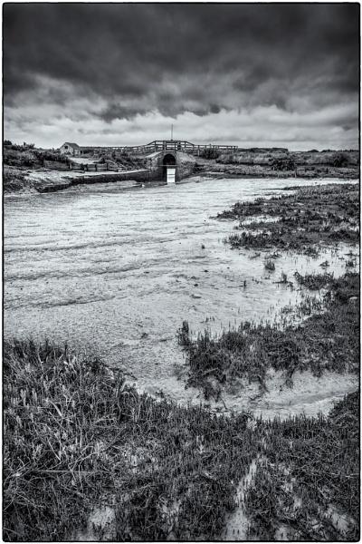 Marshland by Mactogo