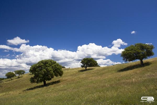 Clouds by clausaresu