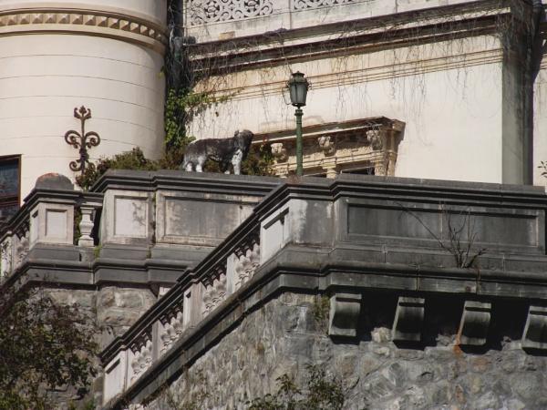 Sinaia: Peles Castle & Park 11 by gss