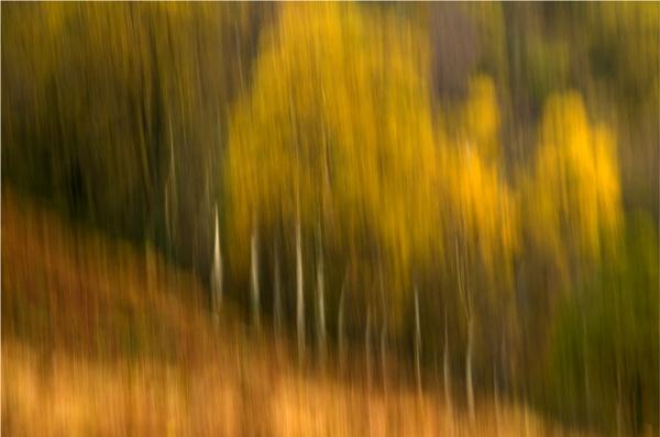 Autumn in Borrowdale. by Desb