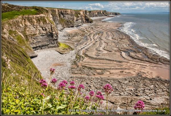 Jurassic Coast by fotosphere