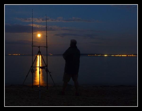 Moonlight Vigil. by esoxlucius