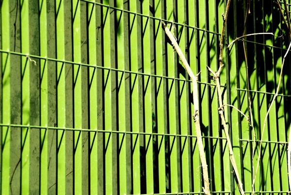 Green Monday! by Chinga