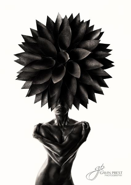 Flower Head by Gp350